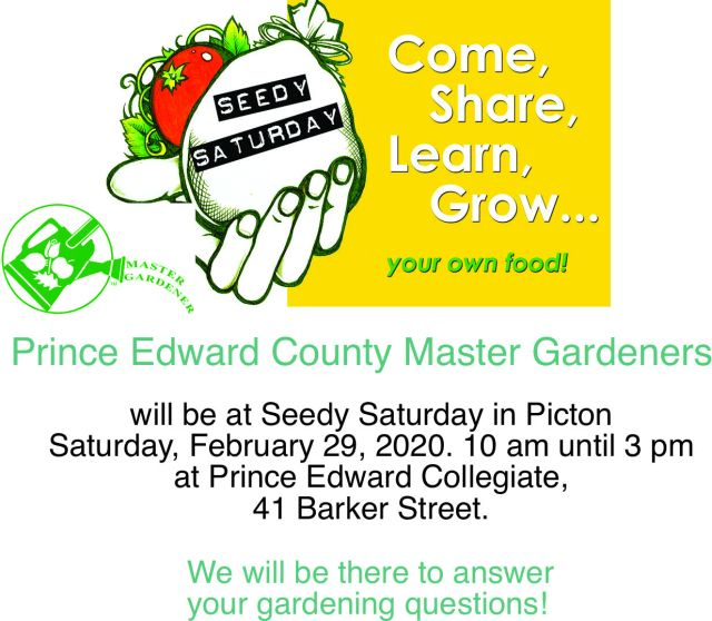 MG Seedy Saturday flyer
